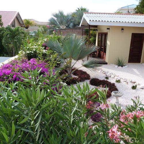 Tropische tuin Villa Topzicht